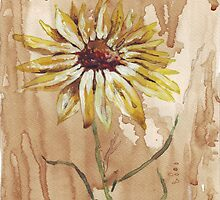 Helianthus (sunflower) by Maree Clarkson