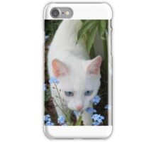 Show Us Your Kitties iPhone Case/Skin
