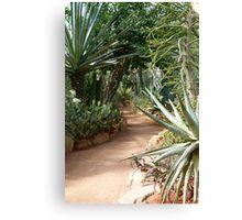 Up the garden path ... Canvas Print