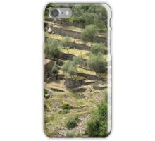 Olivenhain, Ligurien iPhone Case/Skin