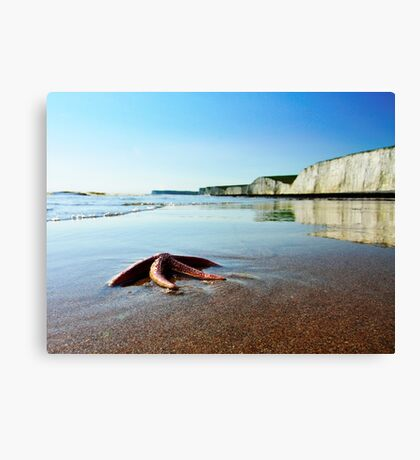 Stranger on the Shore Canvas Print