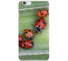 Ladybirds on Corn - Macro iPhone Case/Skin