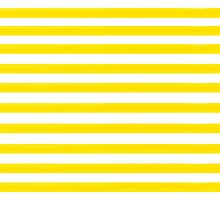 Yellow Striped by rupydetequila