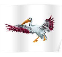 Vibrant Spray-Effect Pelican Poster