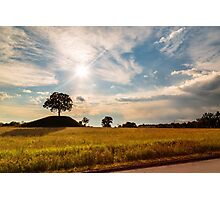 evening in the fields Photographic Print