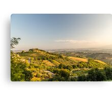 evening in the fields Canvas Print