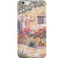 Southwest style iPhone Case/Skin