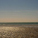 West Wittering Beach by Stephen Frost