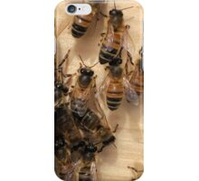 Bees and their Hive iPhone Case/Skin