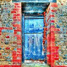 Blue Door by Steve