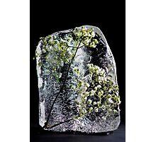 Ice Sculpture Series Photographic Print