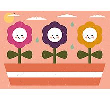 Baby Flowers Photographic Print