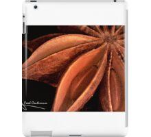 Star anise iPad Case/Skin