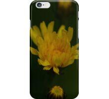 Blume - Flower iPhone Case/Skin
