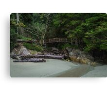 Tonquin Beach Canvas Print
