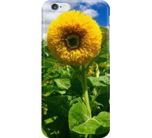 """Joyful"" - Original Artist's Photograph  iPhone Case/Skin"