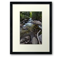 Bell's Canyon River at Dawn Framed Print