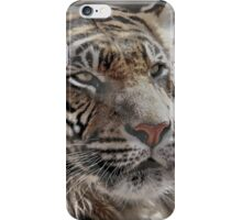 and Tigers and Bears iPhone Case/Skin