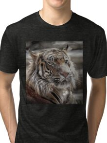 and Tigers and Bears Tri-blend T-Shirt