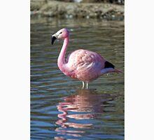 Greater Flamingo (Phoenicopterus roseus) Unisex T-Shirt