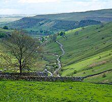 Yorkshire. by John (Mike)  Dobson