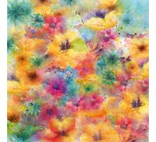 summer flowers /Agat/ Photographic Print