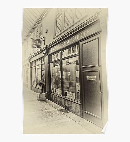 The Bear Shop Vintage Poster
