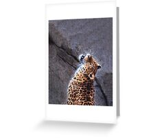 Posing Leopard - Erie Zoo Greeting Card