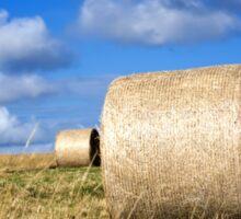 Hay bales in a field in Wiltshire, United Kingdom Sticker