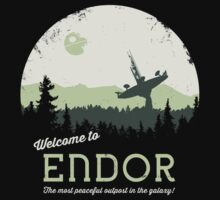 Welcome To Endor Baby Tee