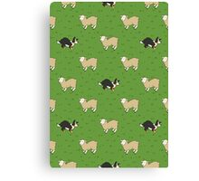 Come Bye - Tri-color dog and white sheep Canvas Print