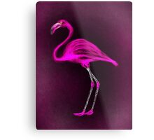 Pink Flamingo. Metal Print