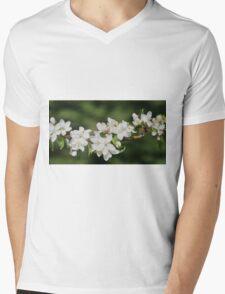 Crab Apple Blossoms Mens V-Neck T-Shirt