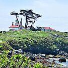 Lighthouse On A Hill by marilyn diaz