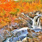 Rogie Falls  by Stephen Frost