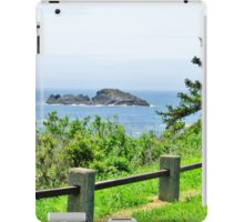 Just Looking iPad Case/Skin