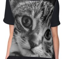 Archie The Cat Chiffon Top