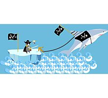 Pirate penguin and shark Photographic Print