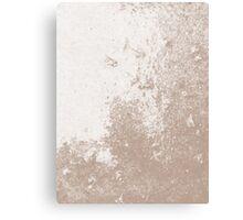 Earth Sweat Design (Warm Taupe Color) Canvas Print
