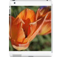 Tulip Sunrise iPad Case/Skin