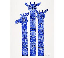 Navy Giraffes Photographic Print