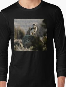 The Sentinel #1 Long Sleeve T-Shirt
