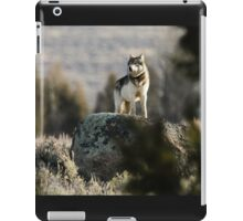 The Sentinel #1 iPad Case/Skin
