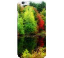 Fall Colours  iPhone Case/Skin