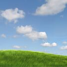 Freedom Hills by Herbert Shin