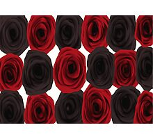 Gothic roses red and black. Photographic Print