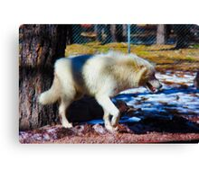 """Call of the Wild"" --title by Jack London Canvas Print"
