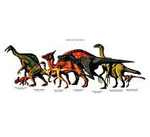 Bajanzag's Dinosaurs Photographic Print