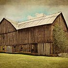 Barn with character by vigor