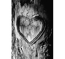 Tree Heart Black and White Photographic Print